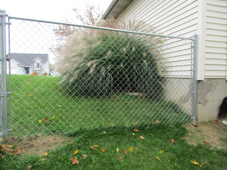 chain link fence installation fencing west Michigan