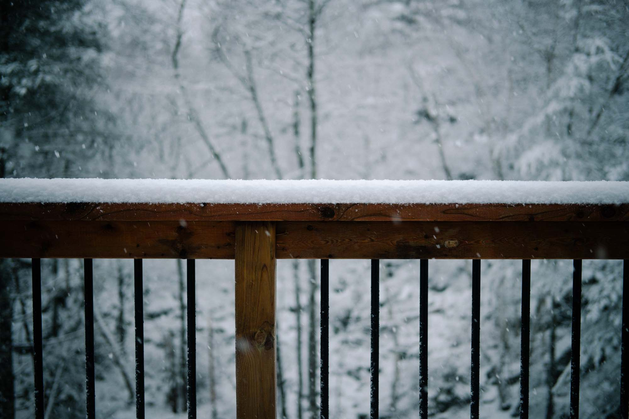 How to Keep Your Fence Beautiful in the Winter