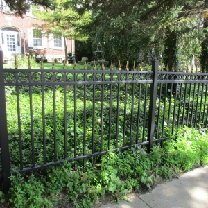 Build Access Control Fence Consultants