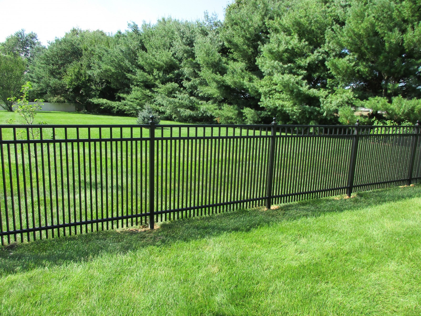 Aluminum Fence Consultants Of West Michigan 16 2 Butterfly New Photo For
