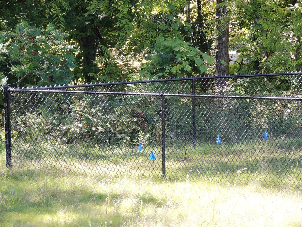 Chain Link Fence Fence Consultants Of West Michigan